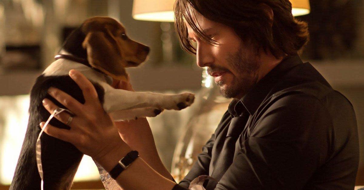 John Wick com cachorrinho que sua esposa lhe presenteará